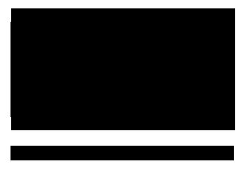 Giana Dana Point Logo